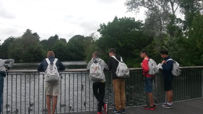 Estudiantes en Dublin Zoo