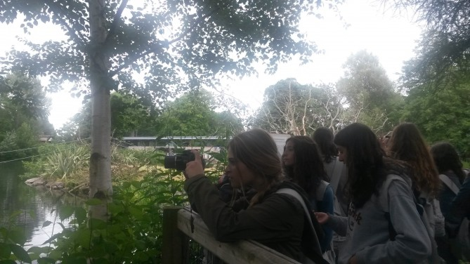 Tec en Dublin Zoo