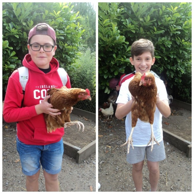 Dos valientes con las gallinas