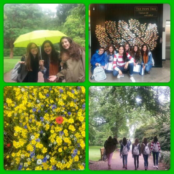 Royal Botanic Gardens Edimburgo